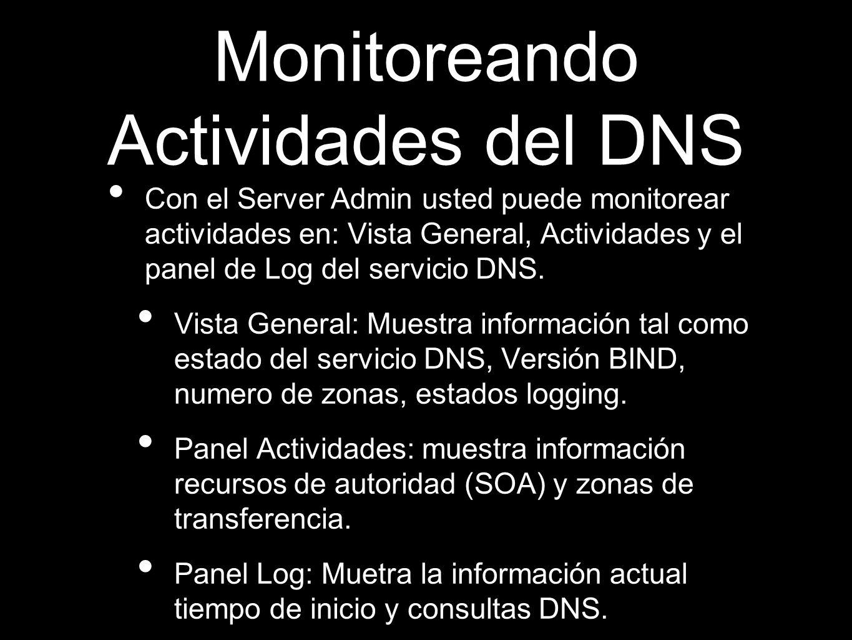 Monitoreando Actividades del DNS