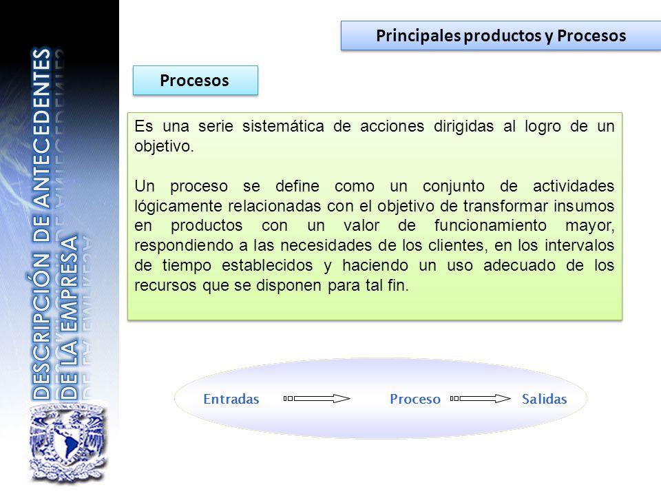 Principales productos y Procesos