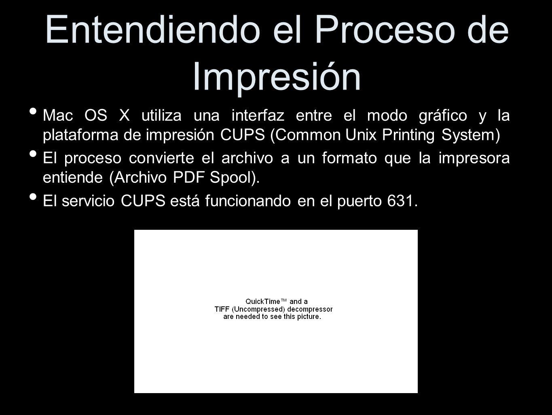 Entendiendo el Proceso de Impresión