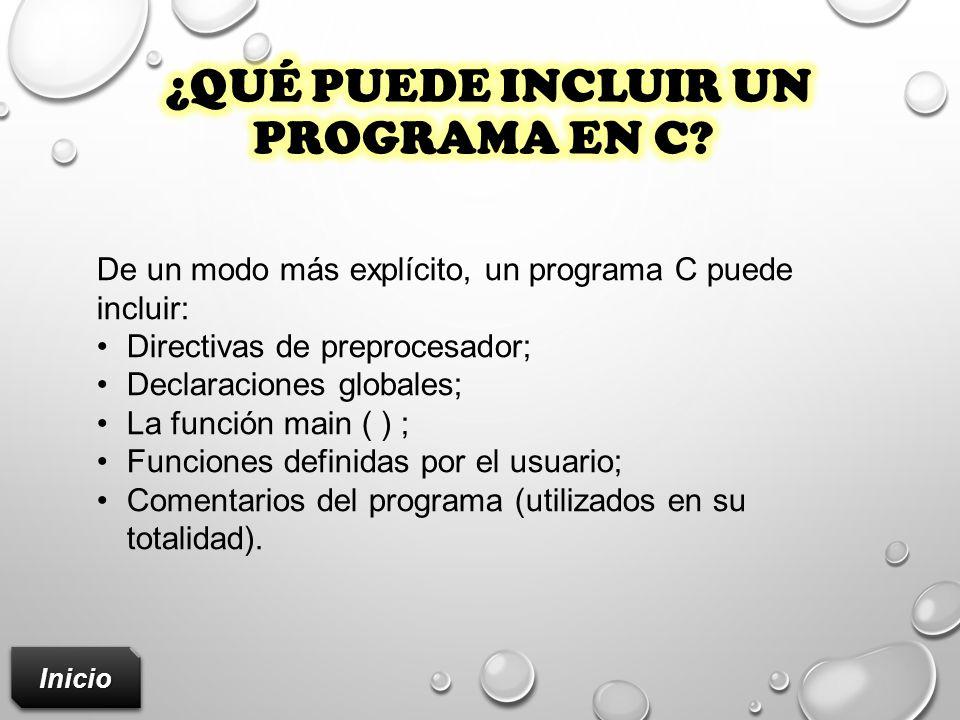 ¿Qué puede incluir un programa en c