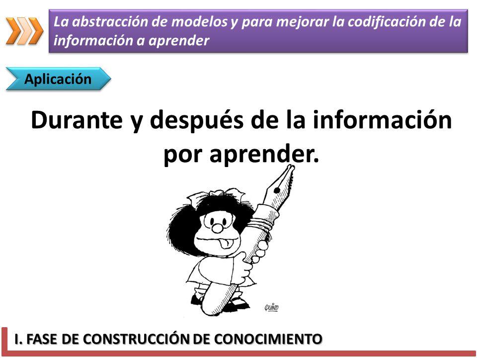 Durante y después de la información por aprender.