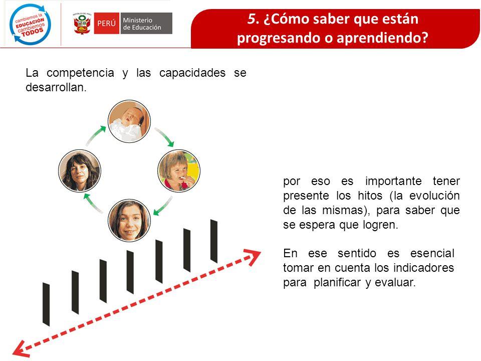 5. ¿Cómo saber que están progresando o aprendiendo