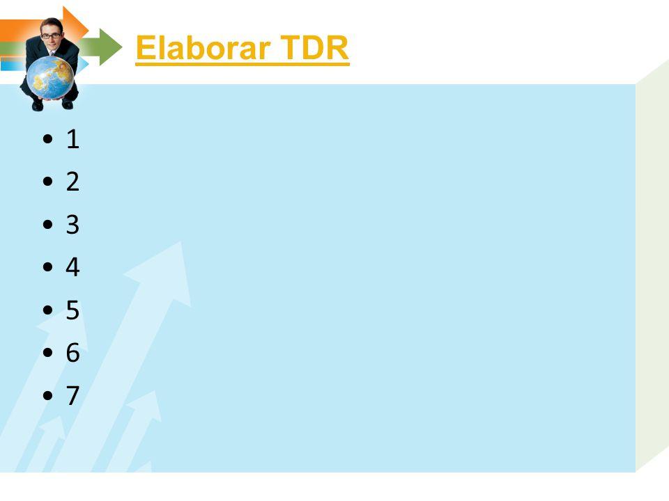 Elaborar TDR 1 2 3 4 5 6 7