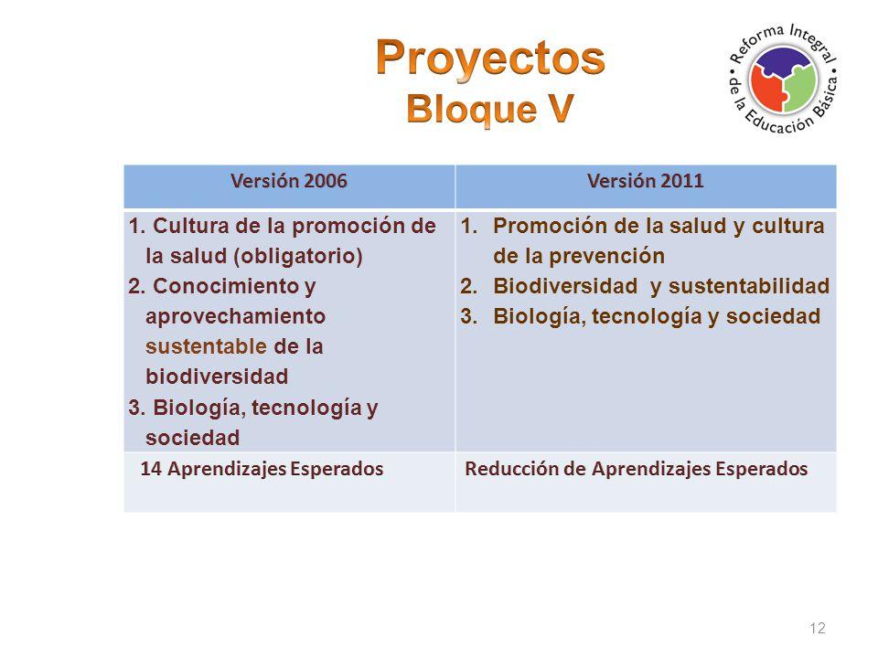 Proyectos Bloque V Versión 2006 Versión 2011
