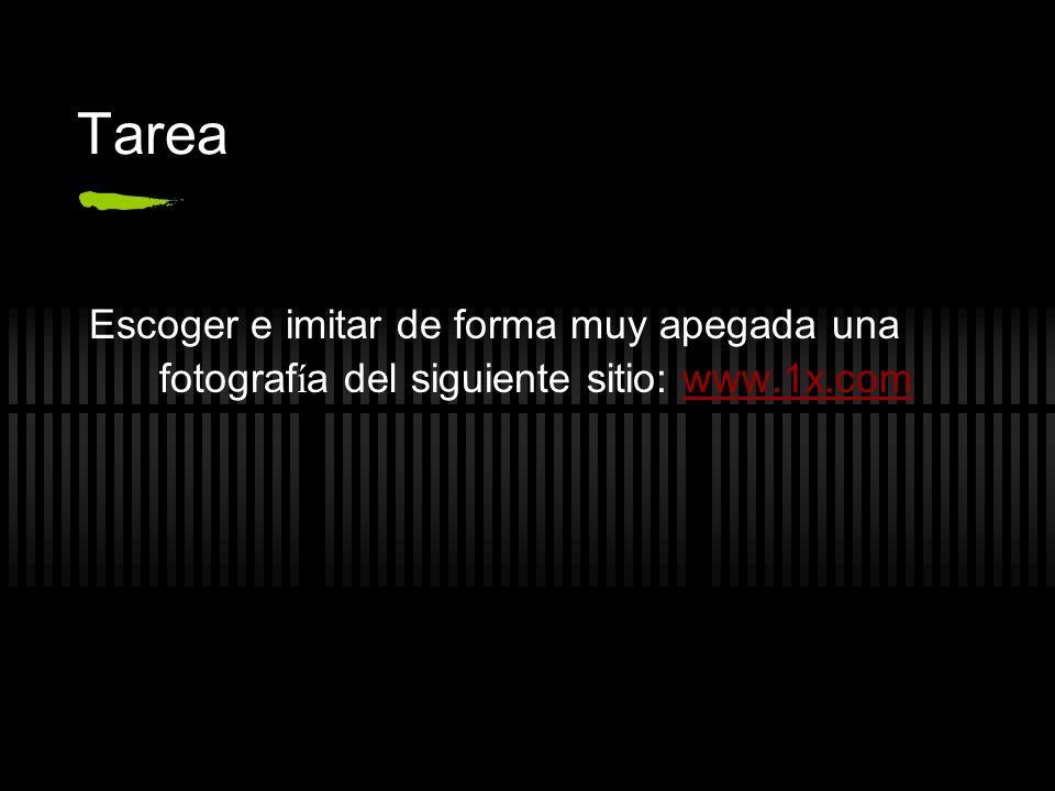 Tarea Escoger e imitar de forma muy apegada una fotografía del siguiente sitio: www.1x.com