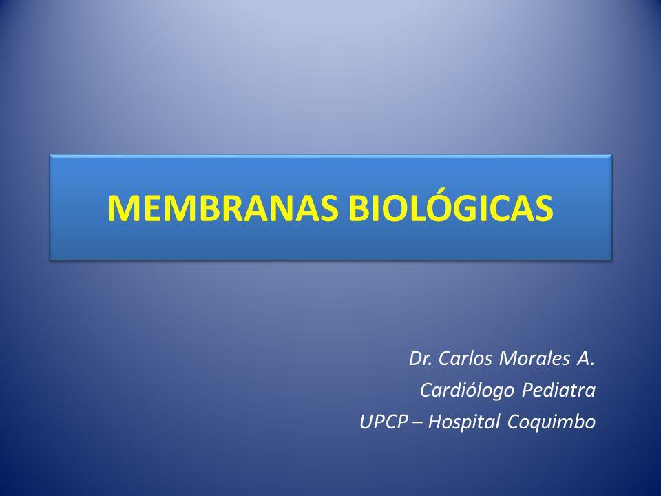 Dr. Carlos Morales A. Cardiólogo Pediatra UPCP – Hospital Coquimbo