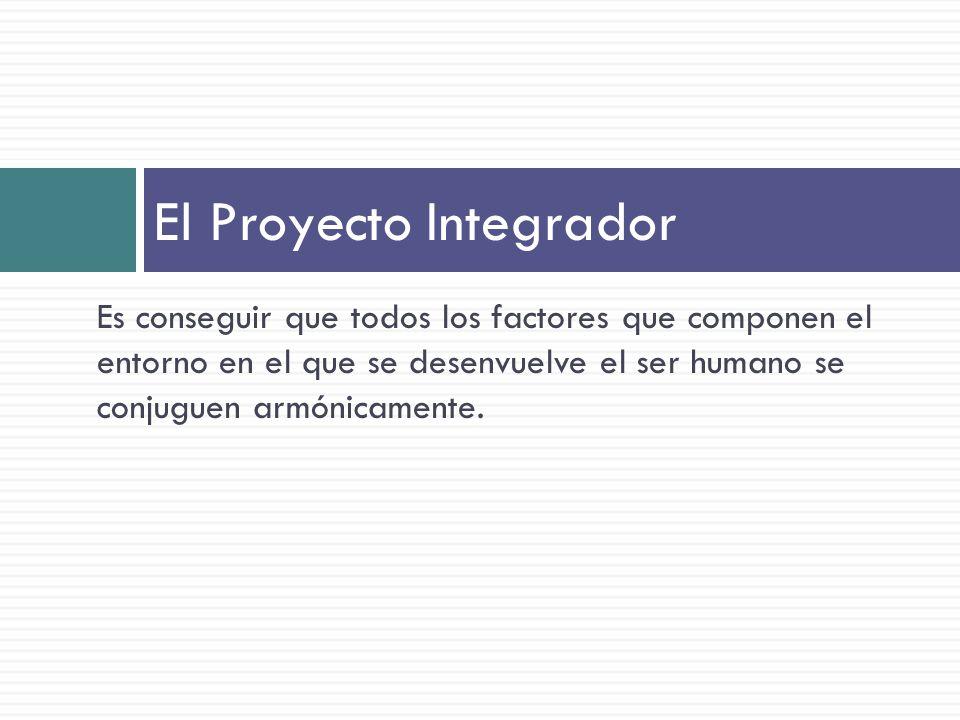 El Proyecto Integrador
