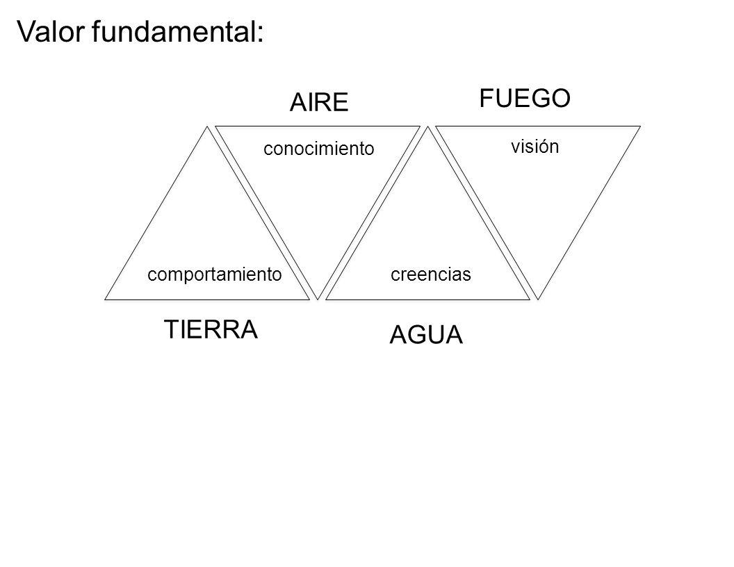Valor fundamental: FUEGO AIRE TIERRA AGUA conocimiento visión