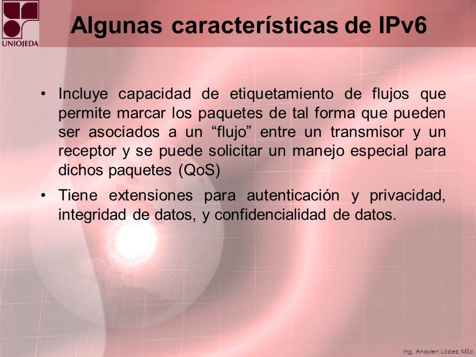 Algunas características de IPv6