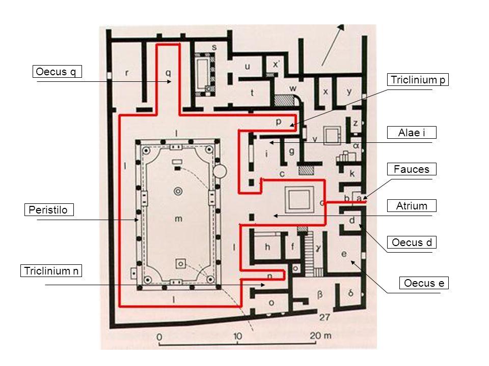 Oecus q Triclinium p Alae i Fauces Atrium Peristilo Oecus d Triclinium n Oecus e