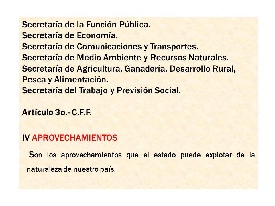Secretaría de la Función Pública.