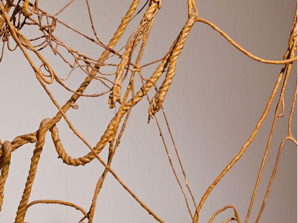 Eva Hess Alemania 1936,USA 1931. Sin título. 1970. Látex, soga, cuerda y alambre. Dimensiones variables.