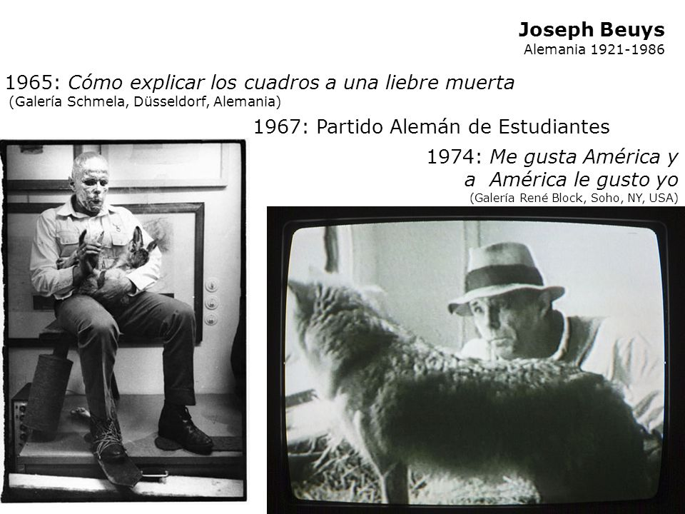 1965: Cómo explicar los cuadros a una liebre muerta