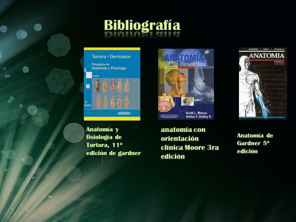 Bibliografía anatomía con orientación clínica Moore 3ra edición