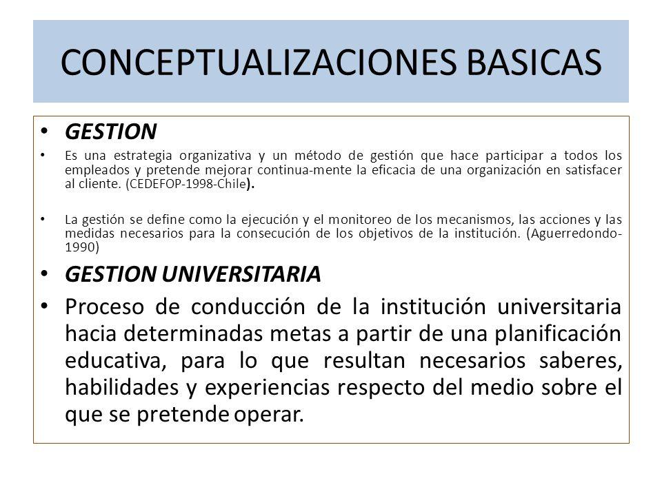 CONCEPTUALIZACIONES BASICAS