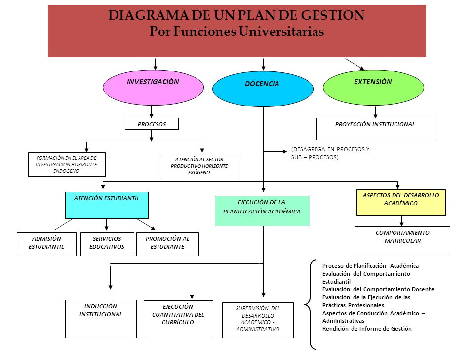 DIAGRAMA DE UN PLAN DE GESTION Por Funciones Universitarias
