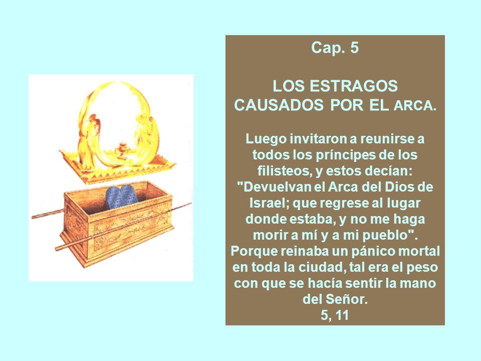 LOS ESTRAGOS CAUSADOS POR EL ARCA.