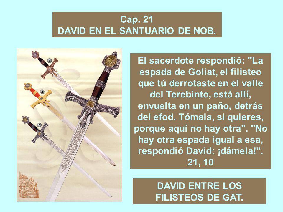 DAVID EN EL SANTUARIO DE NOB.