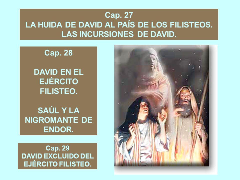 LA HUIDA DE DAVID AL PAÍS DE LOS FILISTEOS. LAS INCURSIONES DE DAVID.