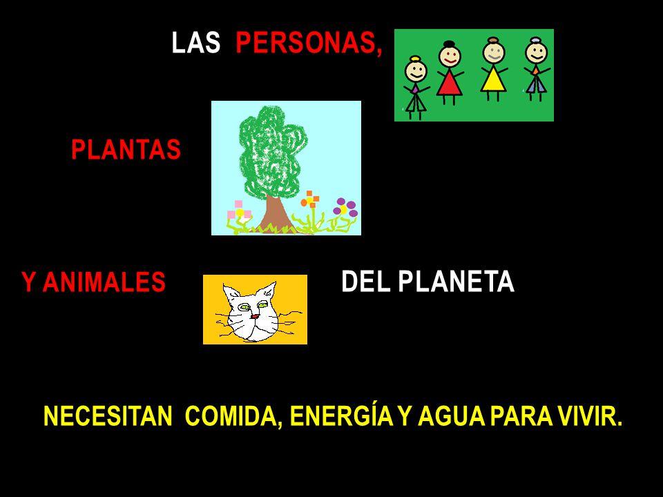 las personas, plantas y animales del planeta