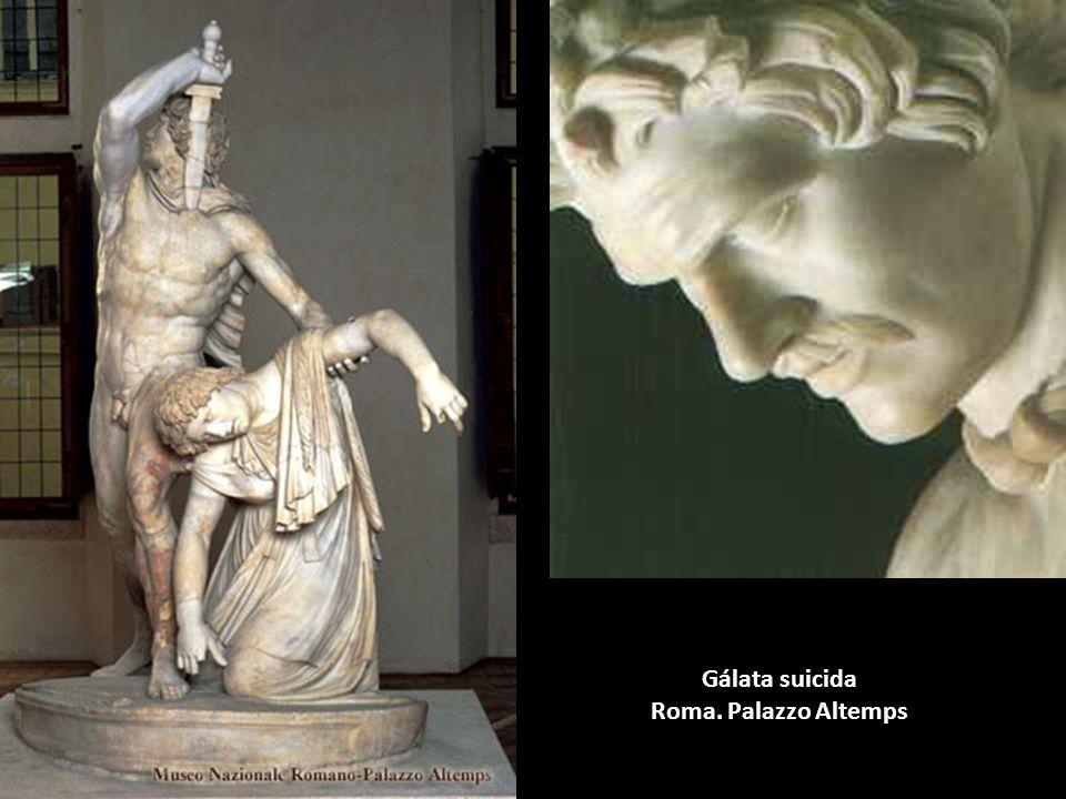 Gálata suicida Roma. Palazzo Altemps