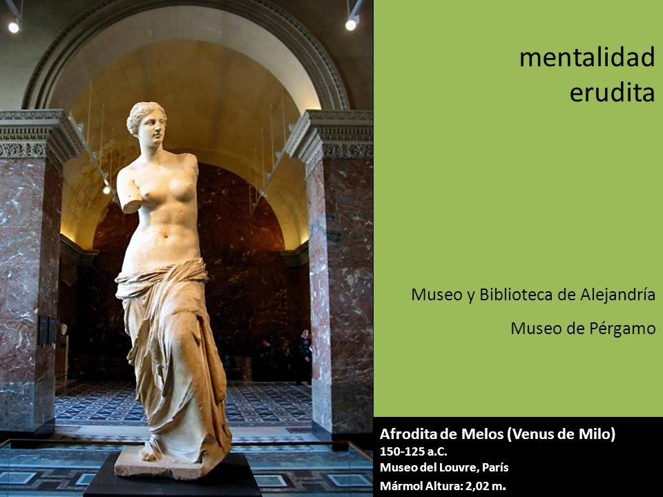 mentalidad erudita Museo y Biblioteca de Alejandría Museo de Pérgamo