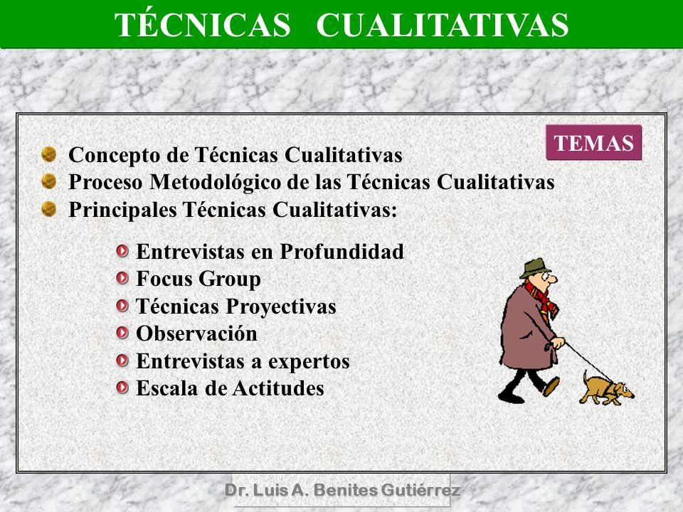 TÉCNICAS CUALITATIVAS Dr. Luis A. Benites Gutiérrez