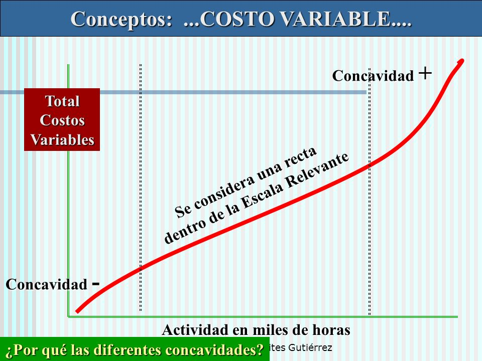 Conceptos: ...COSTO VARIABLE....
