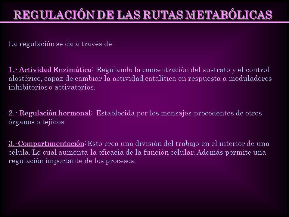 REGULACIÓN DE LAS RUTAS METABÓLICAS