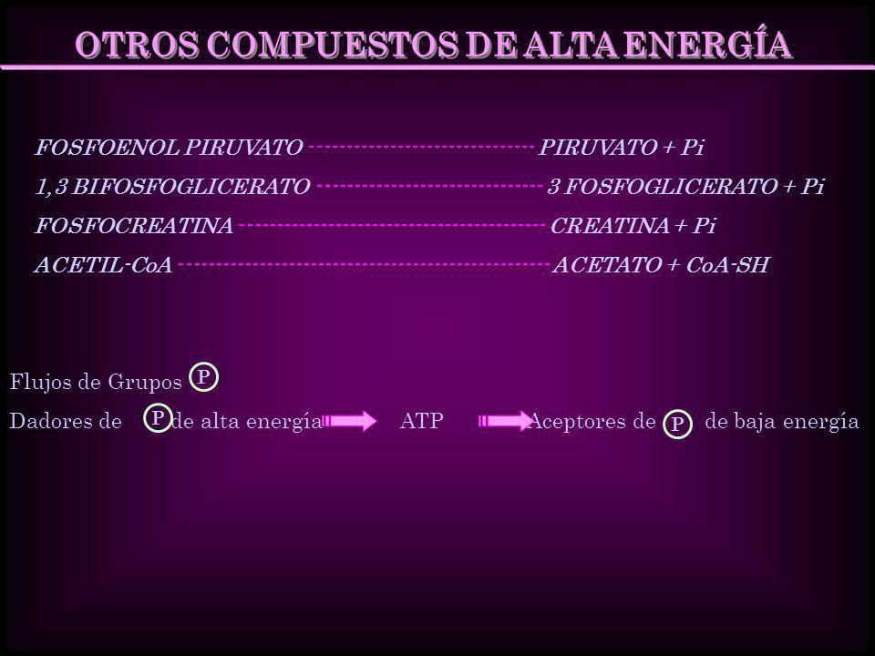 OTROS COMPUESTOS DE ALTA ENERGÍA