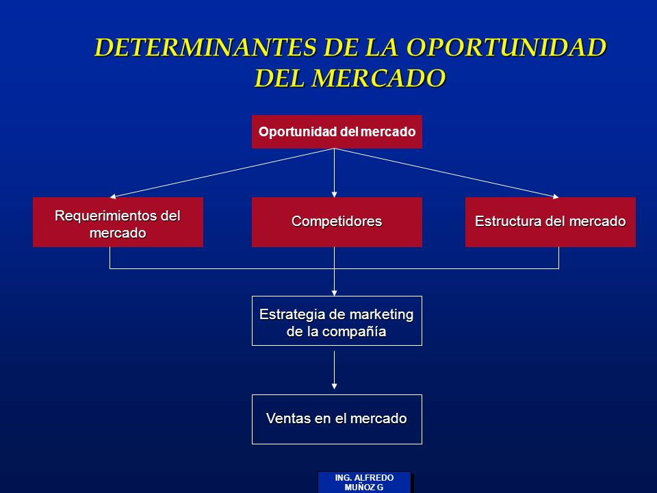 DETERMINANTES DE LA OPORTUNIDAD DEL MERCADO