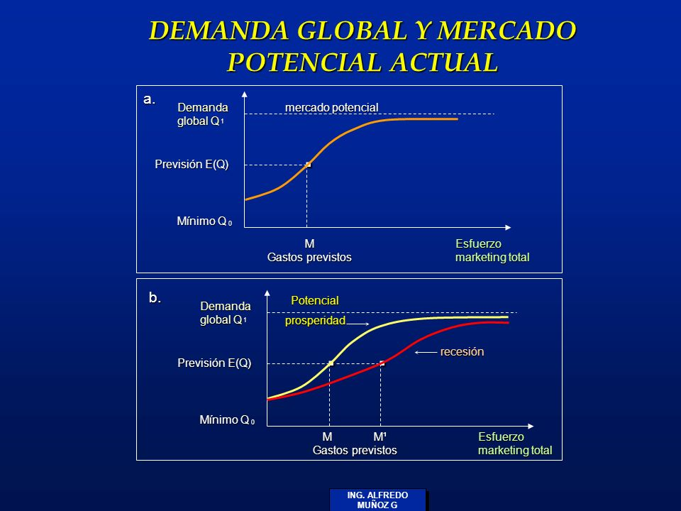 DEMANDA GLOBAL Y MERCADO POTENCIAL ACTUAL