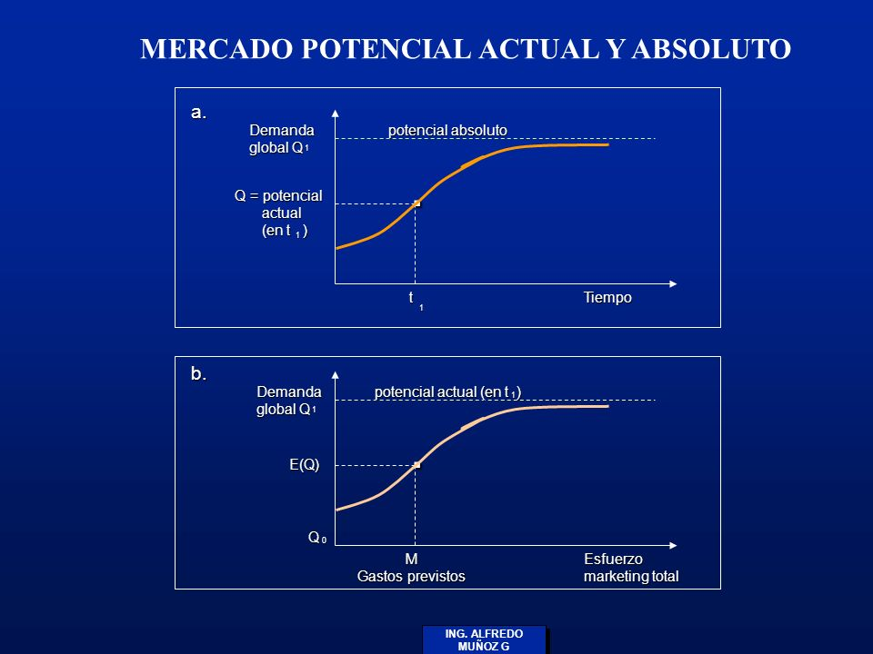 MERCADO POTENCIAL ACTUAL Y ABSOLUTO