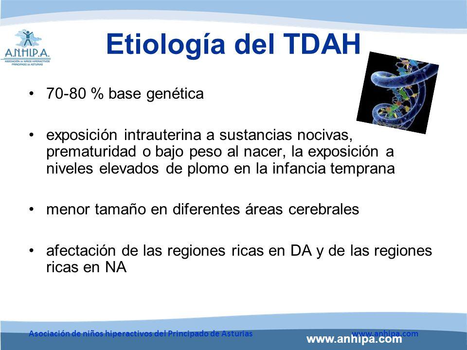 Etiología del TDAH 70-80 % base genética