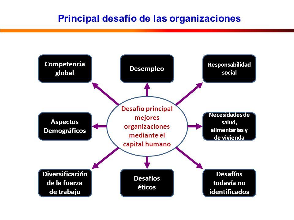 Principal desafío de las organizaciones