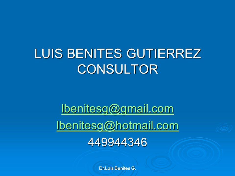 LUIS BENITES GUTIERREZ CONSULTOR