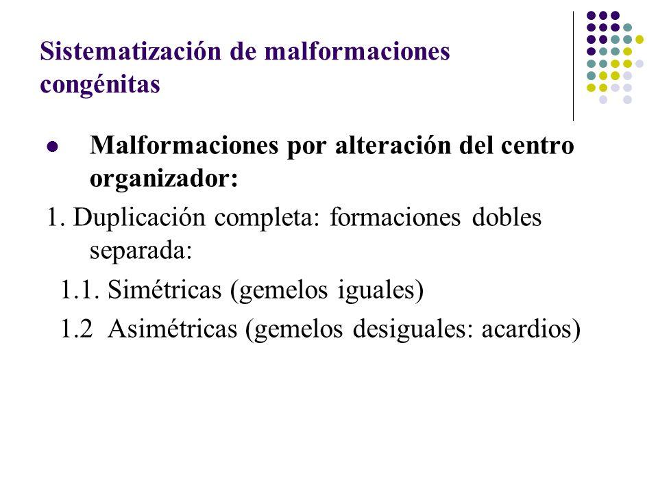 Sistematización de malformaciones congénitas