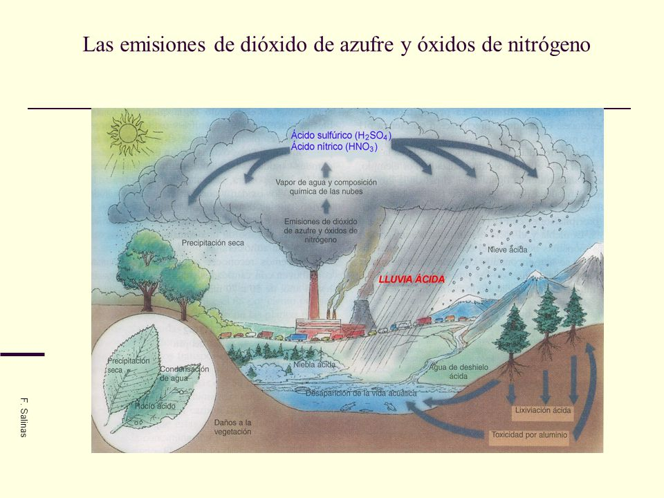 Las emisiones de dióxido de azufre y óxidos de nitrógeno