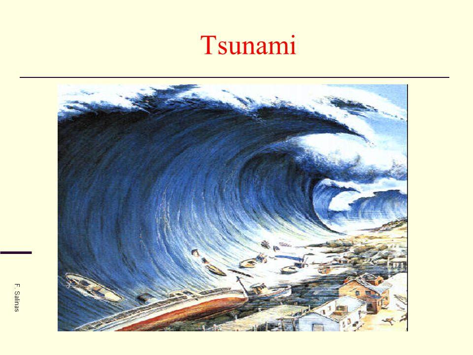 Tsunami F. Salinas