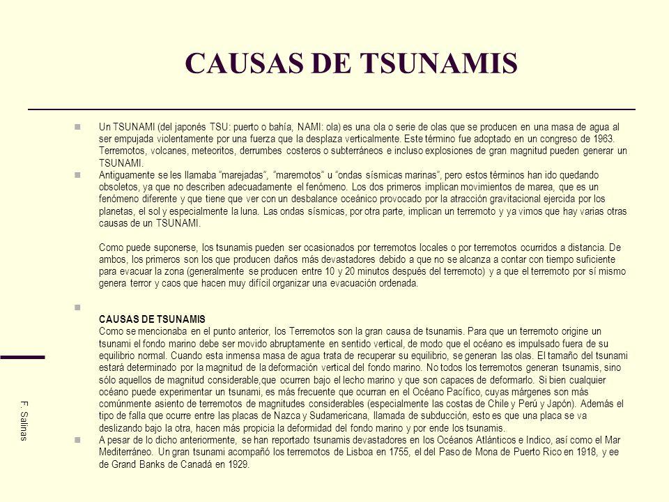 CAUSAS DE TSUNAMIS
