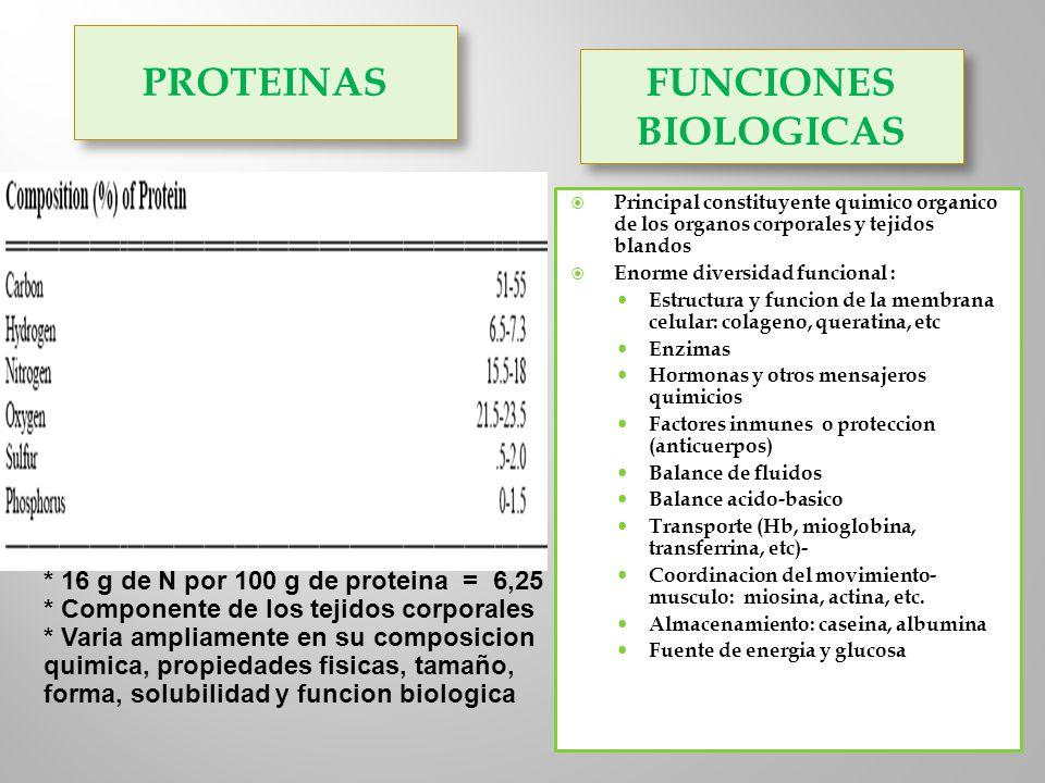 PROTEINAS FUNCIONES BIOLOGICAS