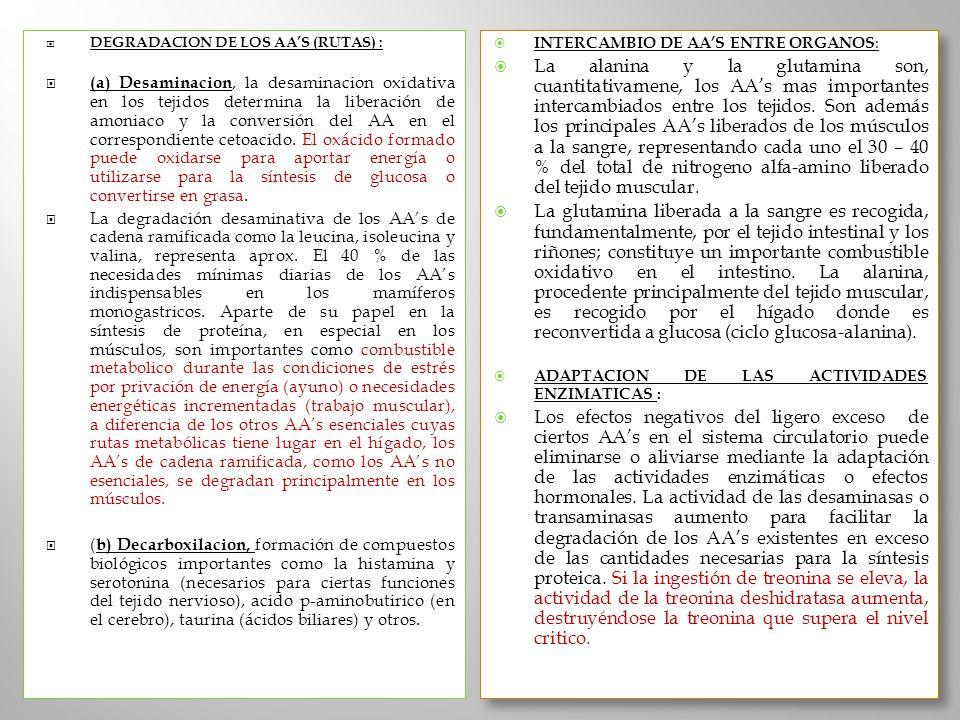 DEGRADACION DE LOS AA'S (RUTAS) :