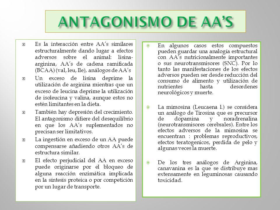ANTAGONISMO DE AA'S