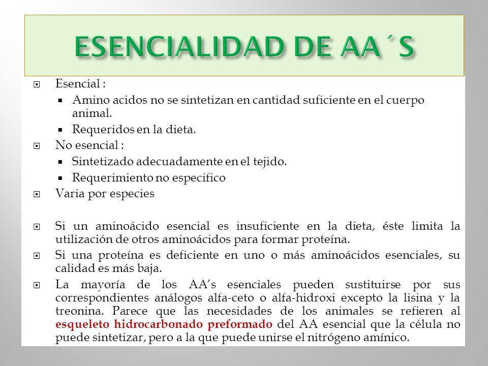 ESENCIALIDAD DE AA´S Esencial :