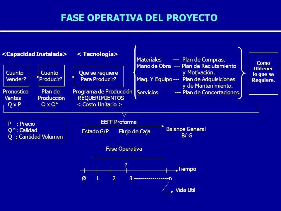 FASE OPERATIVA DEL PROYECTO