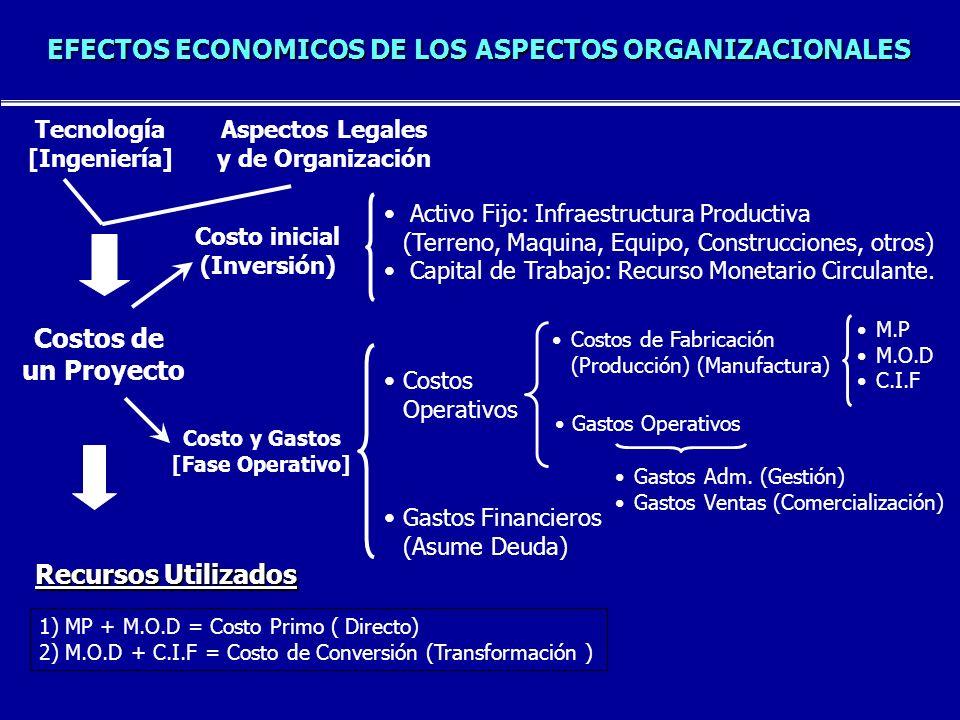 EFECTOS ECONOMICOS DE LOS ASPECTOS ORGANIZACIONALES