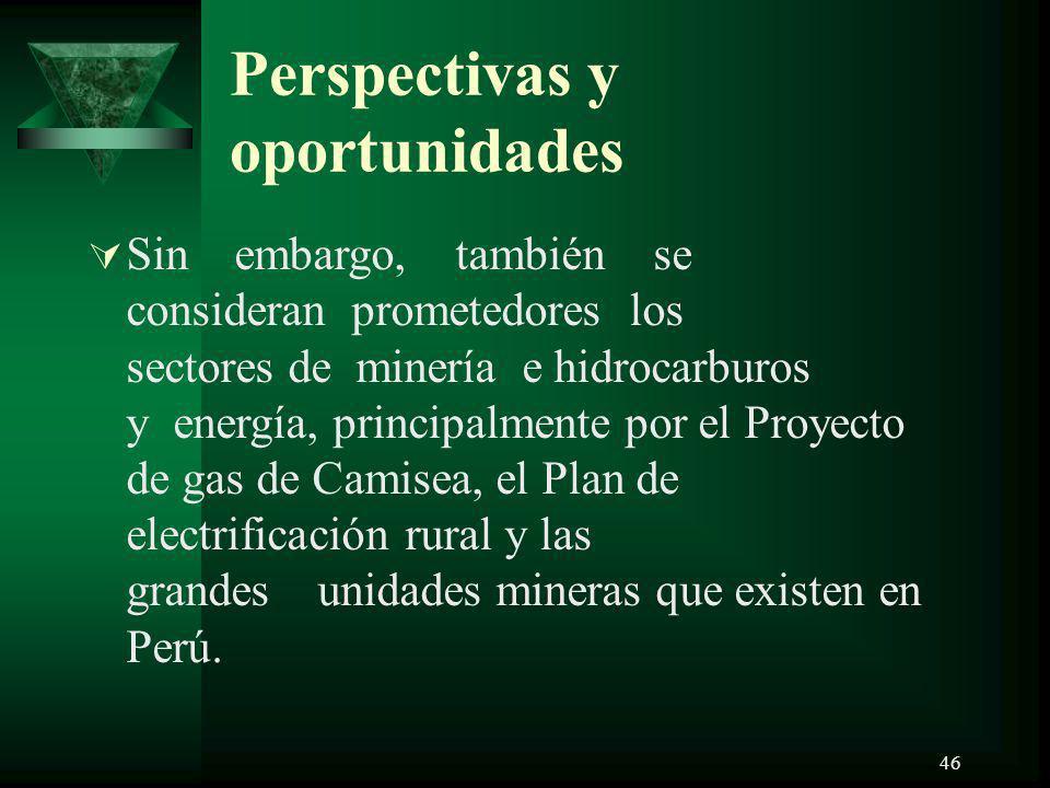Perspectivas y oportunidades