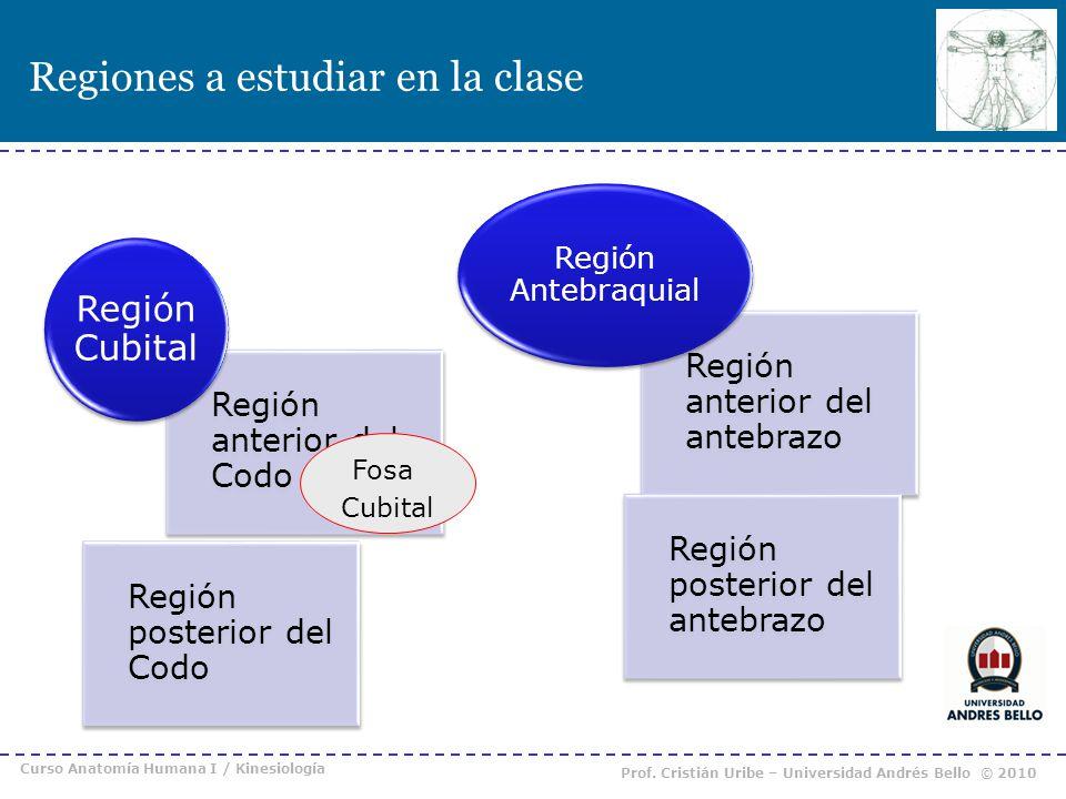 Regiones a estudiar en la clase