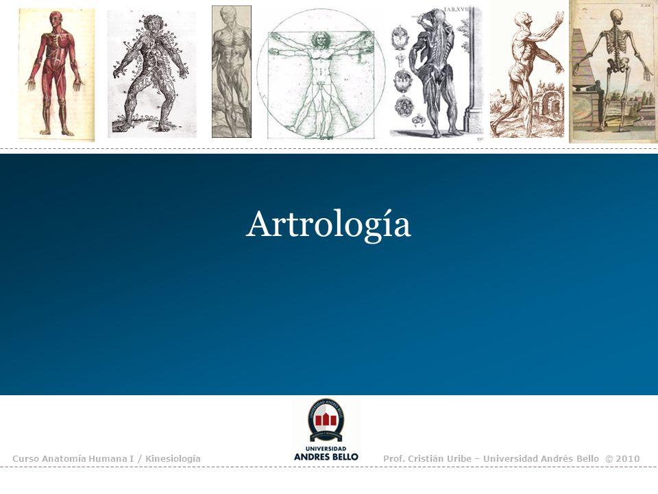 Artrología Curso Anatomía Humana I / Kinesiología