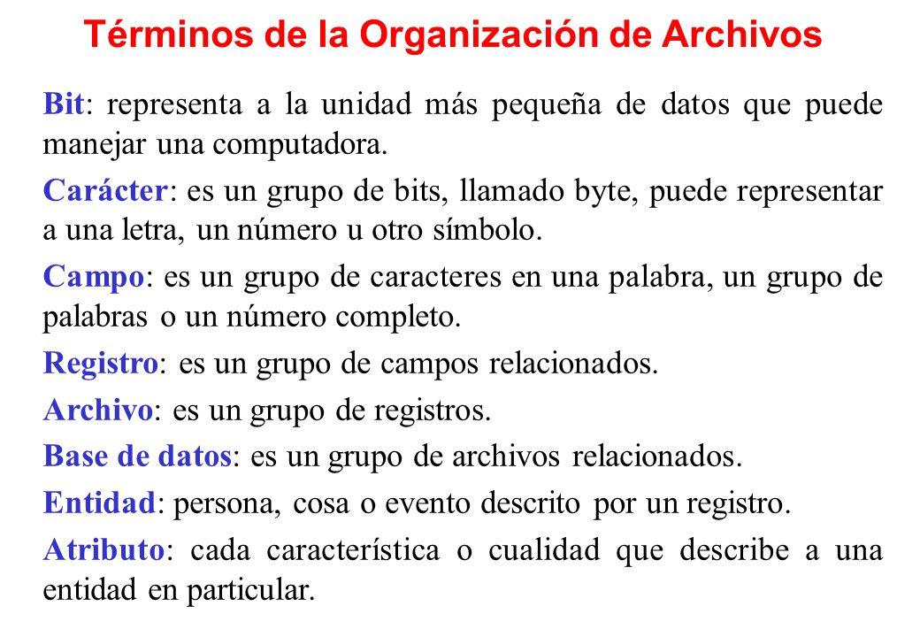Términos de la Organización de Archivos